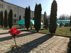 Елизавета Зангиева: У коллектива санатория «Осетия» одна цель и одна задача