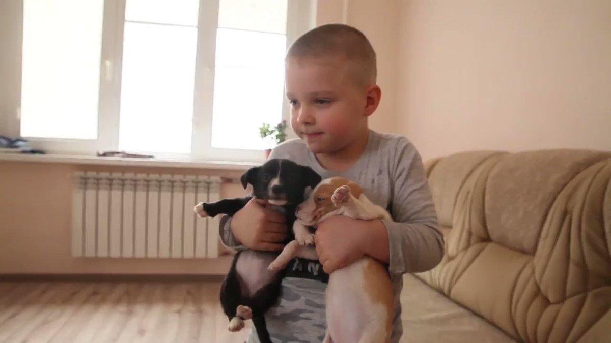 С. ОСЕТИЯ. Дошкольник из Владикавказа стал героем недели по версии проекта «Гордость России»
