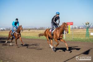 В Беслане прошли конные скачки в честь Дня народного единства