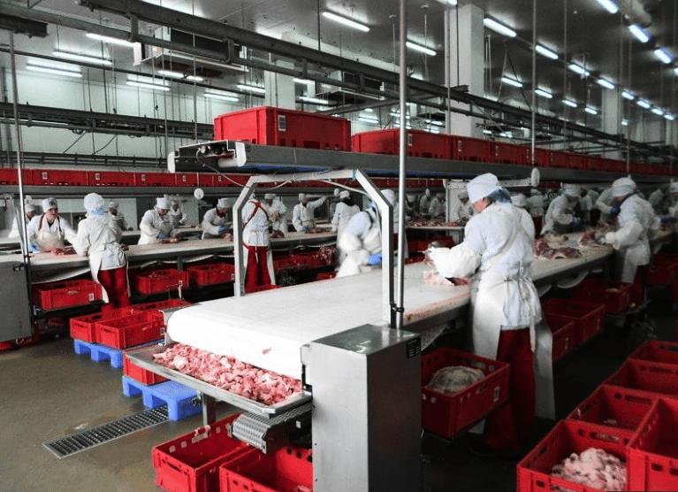 В Северной Осетии осенью построят мясоперерабатывающий завод