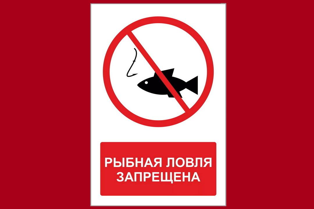 В Северной Осетии введен запрет на ловлю рыбы