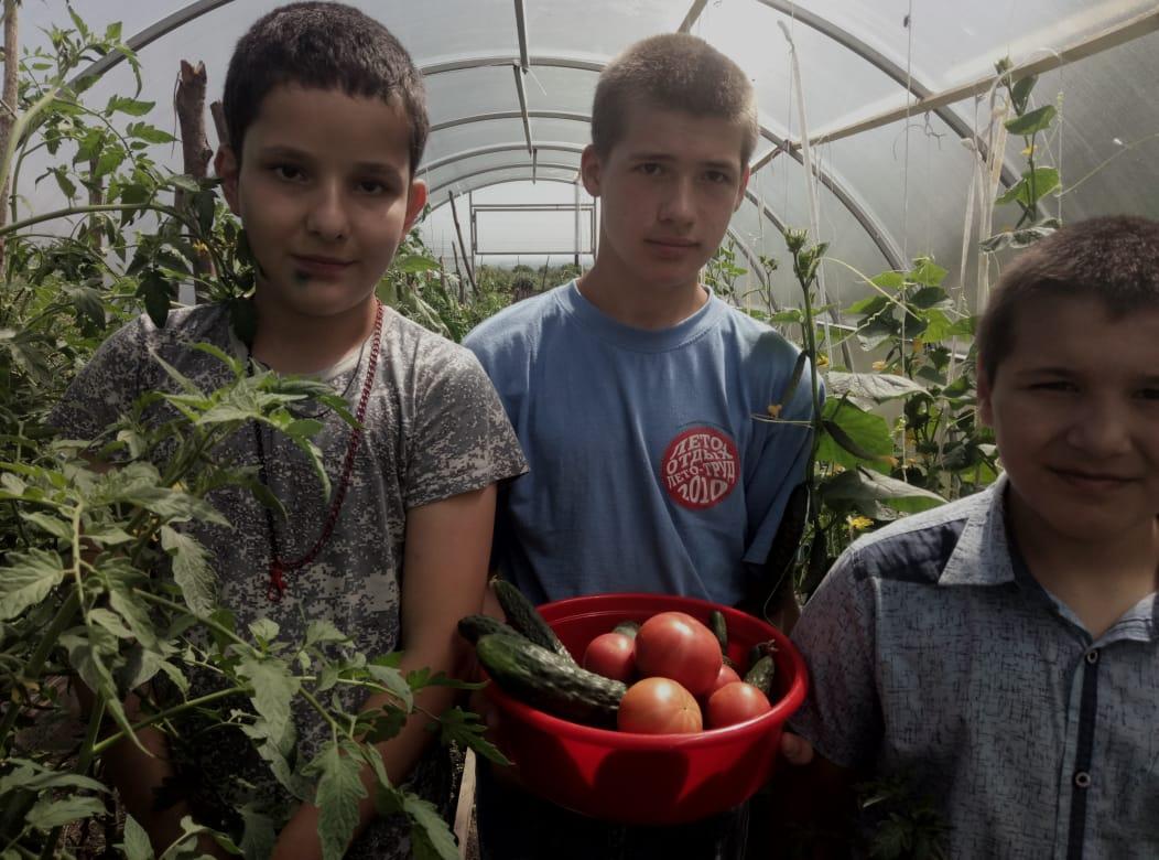 Воспитанники школы-интерната «Надежда» самостоятельно выращивают овощи