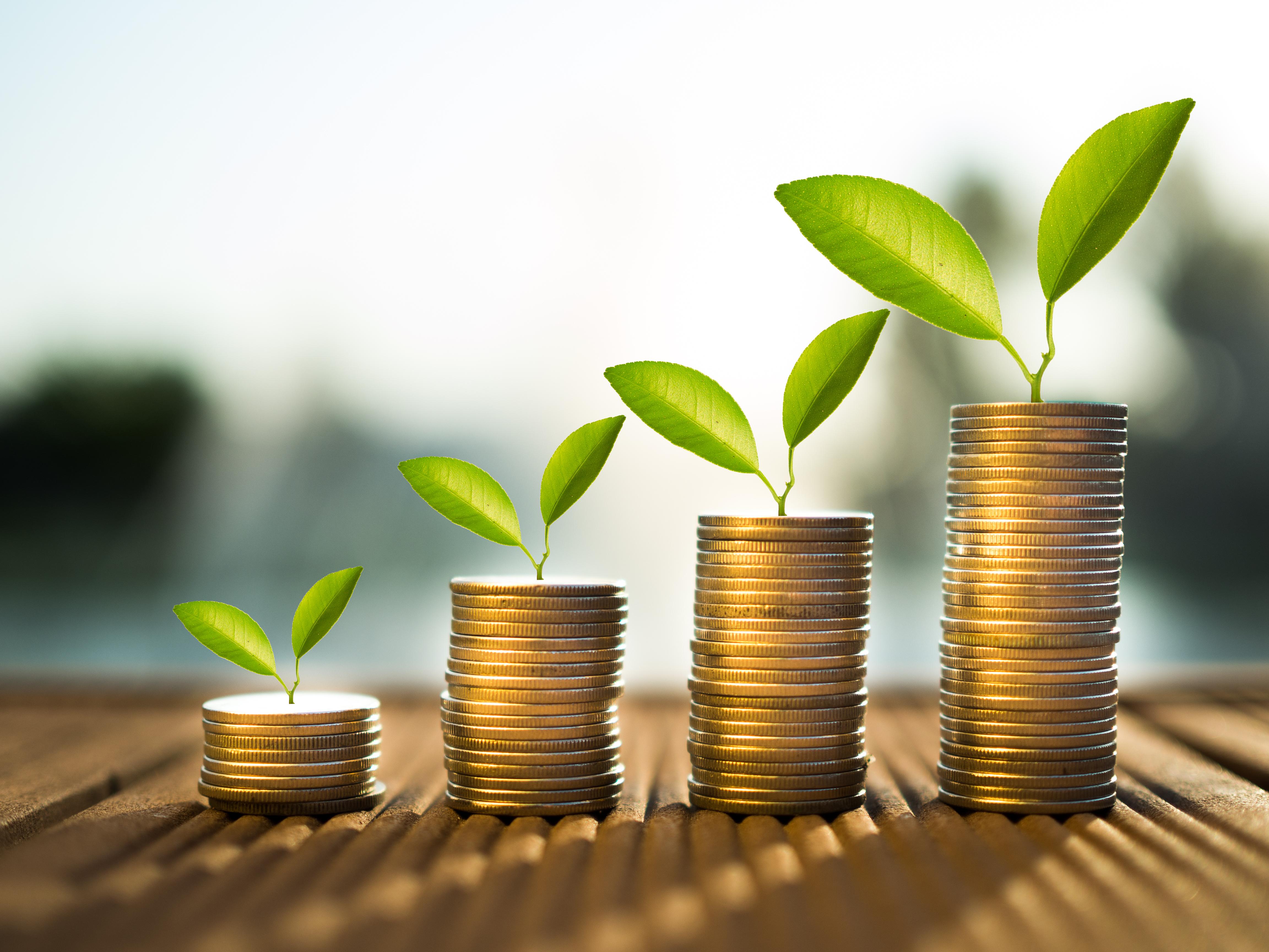 Сергей Котляренко – пример активного многопрофильного инвестора