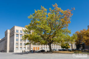 Владикавказская осень