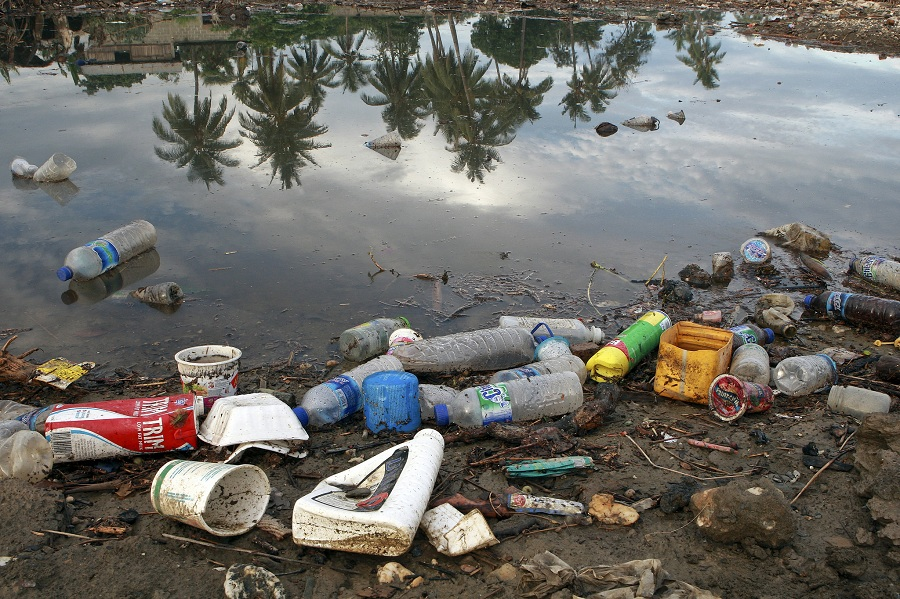 Пластиковое загрязнение планеты. Способы решения проблемы