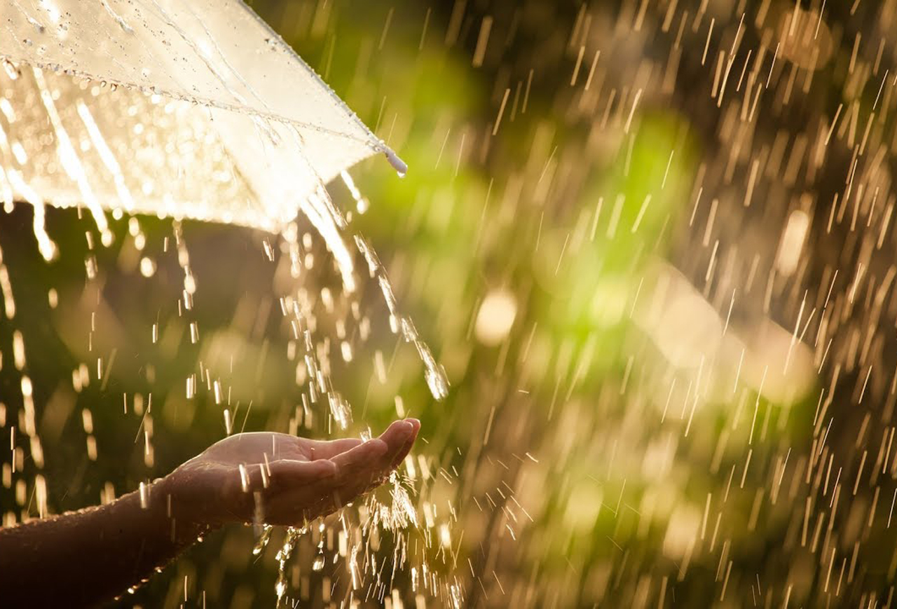 Жара, дождь и гроза: синоптики рассказали, какая погода ожидается в Северной Осетии